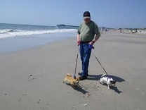 Dogs on the beach at Brigantine NJ